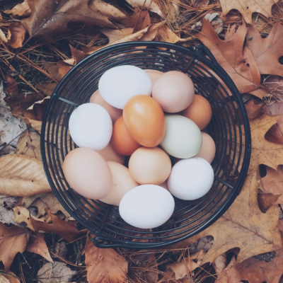 Eggs in basket - interconnection strategy